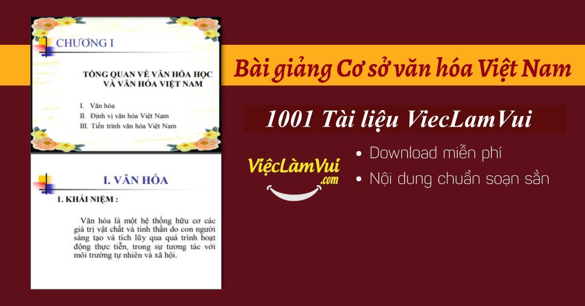 Bài giảng Cơ sở văn hóa Việt Nam
