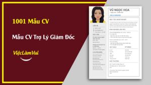 Mẫu CV Trợ Lý Giám Đốc