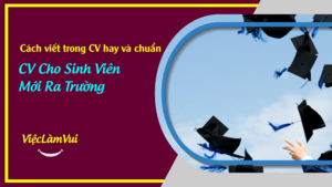 Cách viết CV hay và chuẩn cho sinh viên mới ra trường chinh phục nhà tuyển dụng - Hướng dẫn và tư vấn bởi ViecLamVui