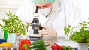 Ngành Công nghệ thực phẩm học trường nào? Danh sách trường có ngành Công nghệ thực phẩm tốt nhất