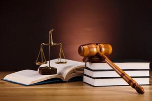 Ngành Luật