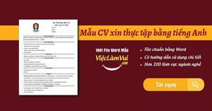 Mẫu CV xin thực tập bằng tiếng Anh file Word