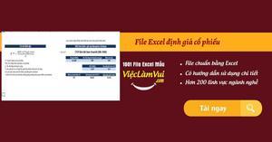 File Excel định giá cổ phiếu