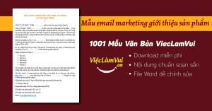 Mẫu email marketing giới thiệu sản phẩm chuyên nghiệp