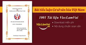 Các bài tiểu luận Cơ sở văn hóa Việt Nam hay