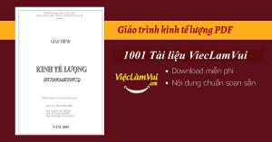 Giáo trình kinh tế lượng PDF