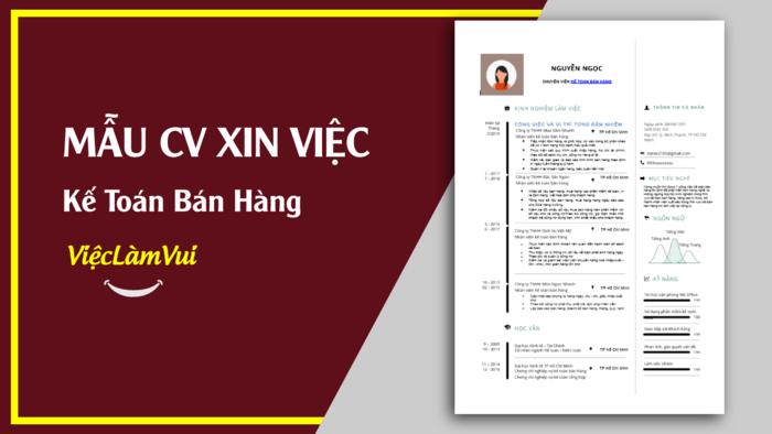 Mẫu CV xin việc kế toán bán hàng - 1001 mẫu cv vieclamvui