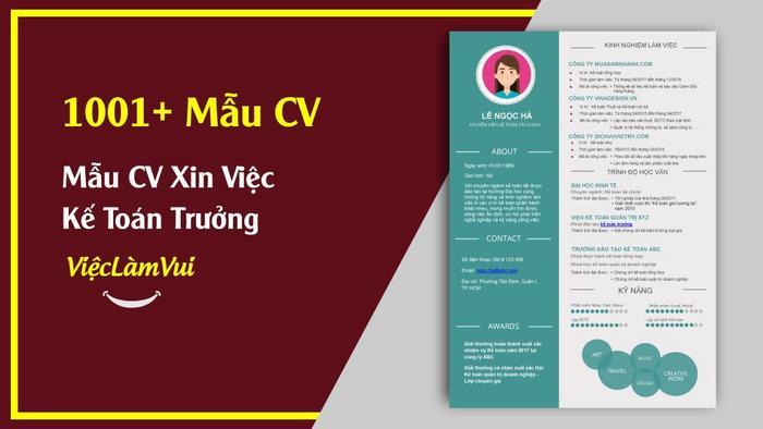 Mẫu CV xin việc kế toán trưởng - 1001 MẪU CV VIECLAMVUI