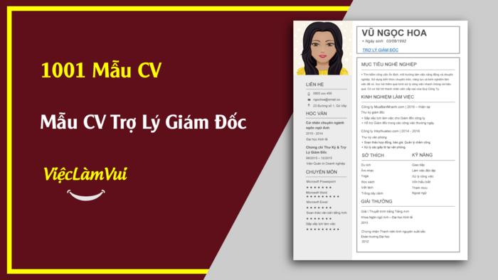 Mẫu CV Trợ lý giám đốc thuộc 1001 mẫu cv vieclamvui
