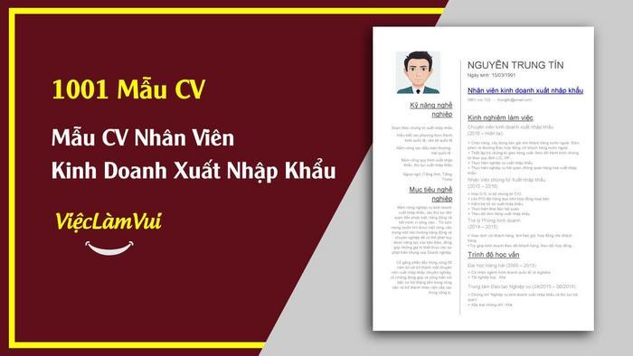 Mẫu CV nhân viên kinh doanh XNK - 1001 mẫu CV ViecLamVui