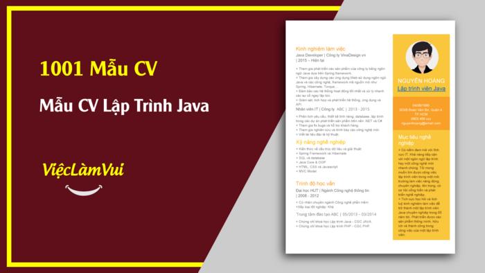Mẫu CV lập trình viên Java - 1001 mẫu CV ViecLamVui