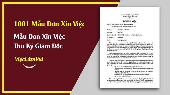 Mẫu đơn xin việc thư ký giám đốc - 1001 mẫu đơn xin việc ViecLamVui