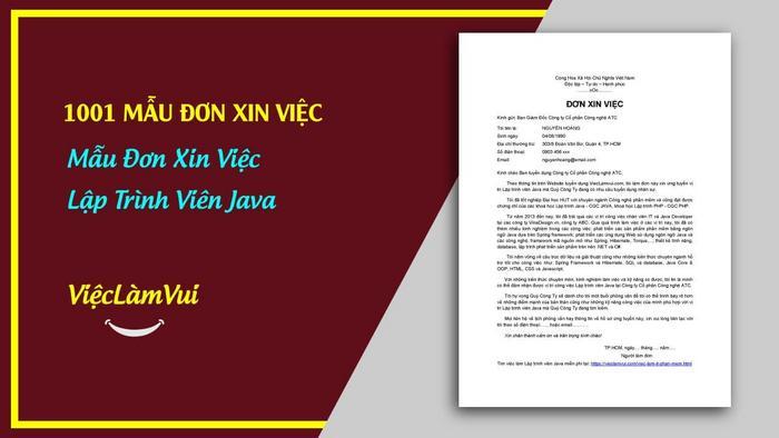 Mẫu đơn xin việc lập trình viên java - 1001 mẫu đơn xin việc ViecLamVui