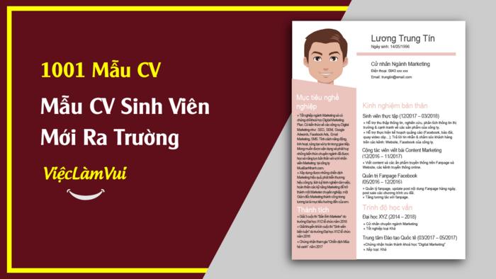 Mẫu CV cho sinh viên mới ra trường - 1001 Mẫu CV ViecLamVui
