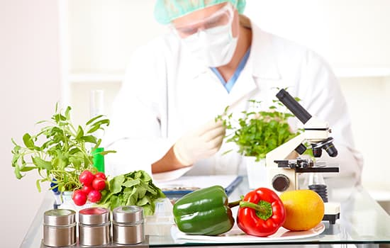 Ngành Công nghệ thực phẩm - ViecLamVui
