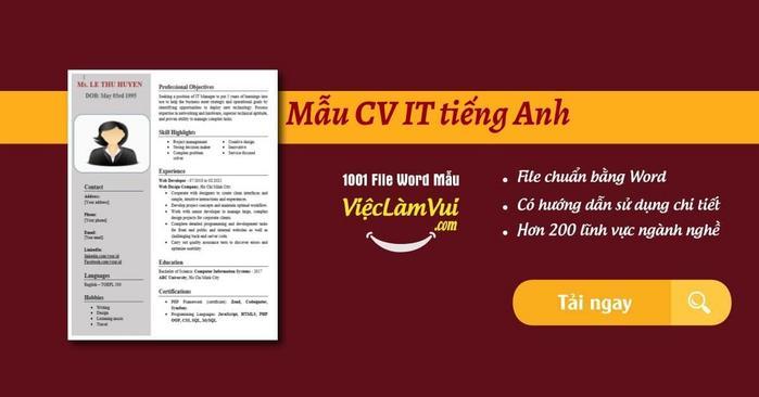 CV IT tiếng Anh - ViecLamVui